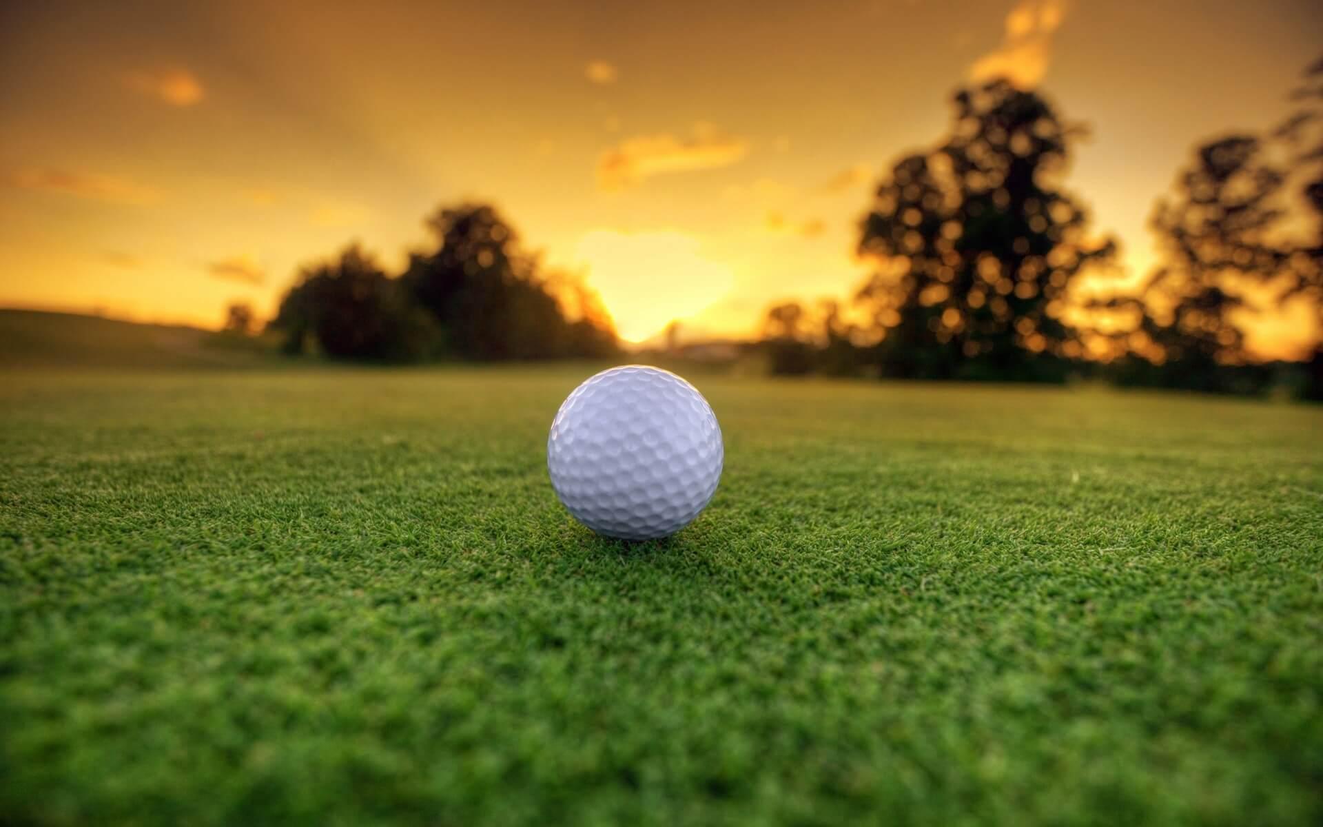 Dan Shauger Golf